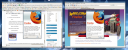 Both Firefox Versions Together