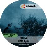 Ubuntu 10.04 Server amd64