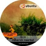 ubuntu_10.10_desktop_amd64