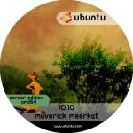 ubuntu_10.10_server_amd64